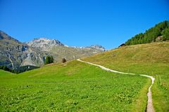 Hiking in the swiss alps. (Maloja Stock Photo
