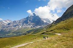 Hiking in alps. Hiking in swiss alps (Jungfrau region Stock Images