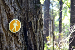 Hiking Symbol. This orange hiking blaze marks a trail for backpackers and hikers alike Stock Photos