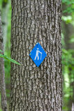 Hiking Symbol on Tree Royalty Free Stock Photos