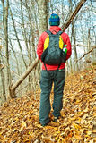 Hiking The Trail/Autumn Royalty Free Stock Photos