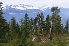 Hiking to Elfin Lakes Royalty Free Stock Photography
