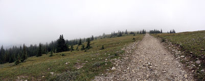 Hiking to the top. Of Moose Mountain,alberta,canada Stock Photo