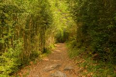 Hiking in torla ordesa, pyrenees of huesca stock images