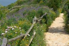 Hiking track Stock Photo