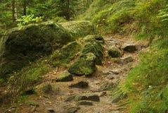 Hiking track Hirschgrundweg 12 Royalty Free Stock Photos