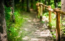 Hiking track Royalty Free Stock Photo