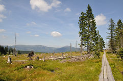 Hiking trail. In the mountains, Krkonose, Czech Republic Royalty Free Stock Images