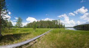 Hiking trail. Panoramic view of hiking trail at Ruunaa hiking area, Finland royalty free stock photos