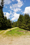 Hiking trail. Hiking trail on mountain pasture stock photography