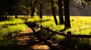 Hiking trail. At Yosemite National Park, USA royalty free stock image
