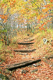 Hiking Trail. Uphill hiking trail in the late autumn on the Blue Ridge Parkway, North Carolina stock image