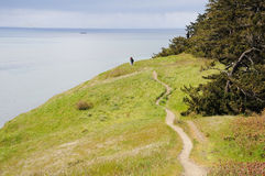 Hiking trail along coastline Stock Photos