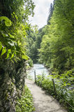 Hiking trail along the mountain river on natural background. Hiking trail along the mountain river stock photo