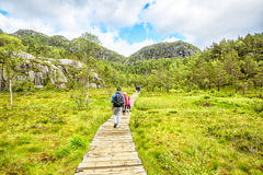 Hiking trail and alpine landscape of the Preikestolen. And Lysefjord area in Rogaland, Norway Royalty Free Stock Photo