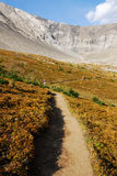Hiking trail in alpine meadow Stock Photo