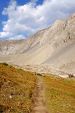 Hiking trail in alpine meadow Royalty Free Stock Images