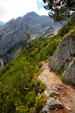 Hiking trail in alps Royalty Free Stock Images