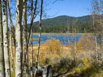 Hiking trail around Spooner Lake Royalty Free Stock Photo