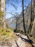 Hiking trail in the Bavarian Alps with lake Koenigssee in the background Royalty Free Stock Images