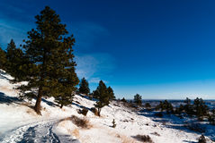 Hiking Trail, Boulder Colorado Stock Images