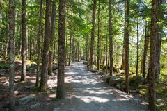 Hiking Trail at Brandywine Falls Provincial Park Stock Photos