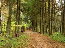 A hiking trail bridge Stock Images