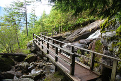 Hiking trail. In British Columbia, Canada Royalty Free Stock Photography