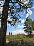 Hiking Trail. A hiking trail inside Bryce Canyon National Park stock photo