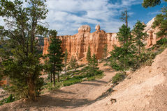 Hiking trail at Bryce Canyon National Park, Utah, USA. The trail leading to the bottom of Bryce Canyon, Utah, USA Stock Images