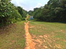 Hiking trail in Bukit Timah nature reserve Stock Image