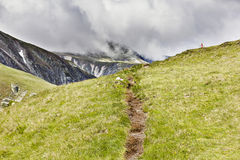 Hiking trail  in Carpathian mountains Stock Images