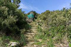 Hiking trail in Cinque Terre Stock Images