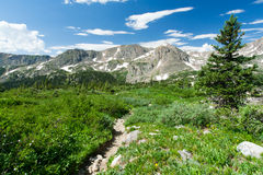 Hiking Trail Through Colorado Mountain Landscape Stock Photos