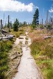 Hiking trail on czech-bavarian borders in Sumava mountain range Royalty Free Stock Image