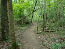 Hiking Trail in Delaware County. Tranquil Hiking Trail in a Delaware County, Ohio Metro Park stock photo