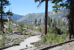 Hiking Trail. Devils Postpile National Park. California, May 2014 Stock Image