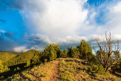 A hiking trail in the dramatic evening light of golden hour follows a ridge top under a beautiful sky royalty free stock images