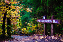 Hiking Trail During Autumn Season Stock Images