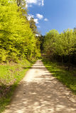 On the Hiking Trail Eifelsteig Royalty Free Stock Images