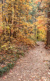 Hiking Trail in Fall Stock Photography