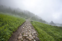 Hiking trail in the fog Royalty Free Stock Photos