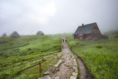 Hiking trail in the fog Stock Photography
