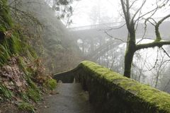 A hiking trail on a foggy day Royalty Free Stock Images