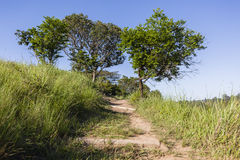 Hiking Trail Foot Path Royalty Free Stock Photography