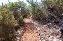 Hiking trail on Gavdos, Greece. Stock Images