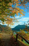 Hiking trail in golden autumnal landscape, lake schliersee, bava Stock Photos