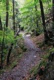 Hiking trail `Harzer Hexenstieg` in Harz mountains. Hiking trail `Harzer Hexenstieg` in the Valley of River Bode Stock Photo