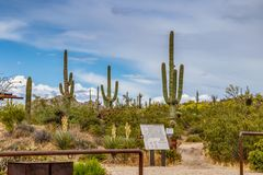 Hiking Trail head at Browns Ranch Desert Preserve. Hiking Trail head at the Browns Ranch Desert Preserve in North Scottsdale, Arizona stock photos