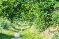 Hiking trail or hollow path through a small forest. Hiking trail, hollow path or alley in Heiligenhaus near Abtskuecher Teich, Germany stock images